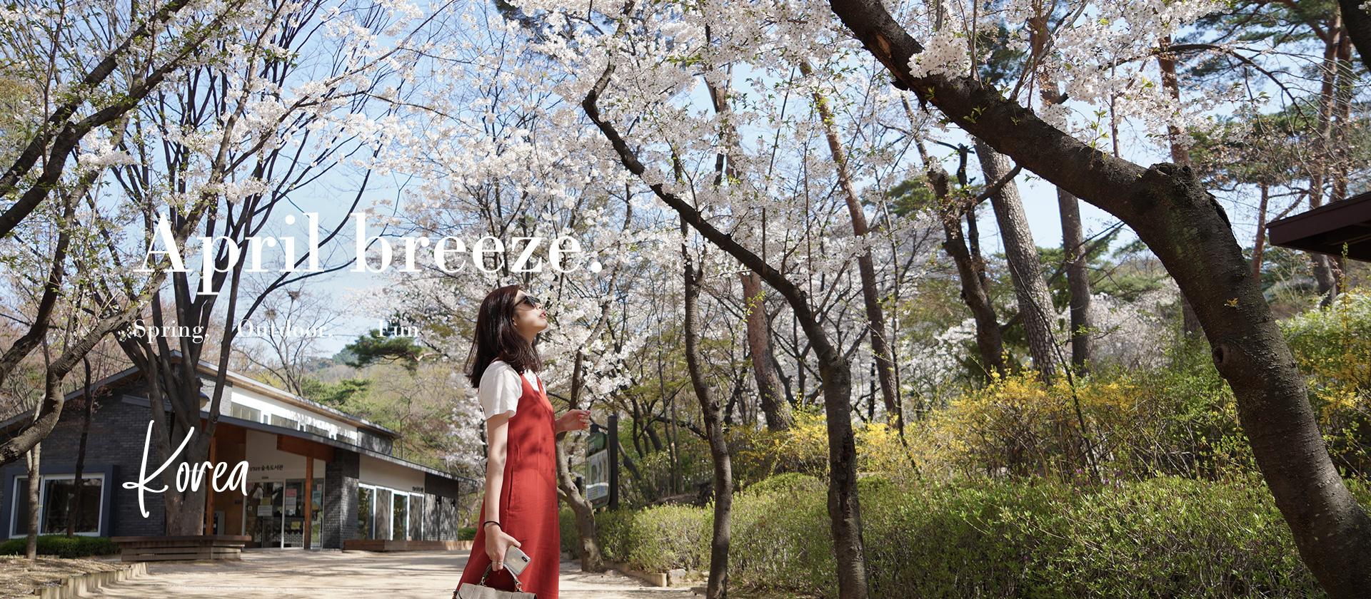 首爾賞櫻特輯 春季出遊新款女鞋